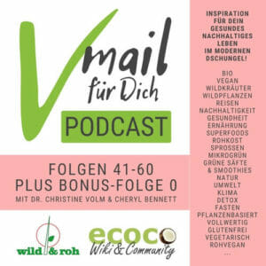 Vmail für Dich Podcast als Hörbuch, eBook Serie 3