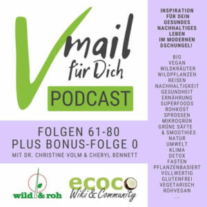 Vmail für Dich Podcast als Hörbuch, eBook Serie 4