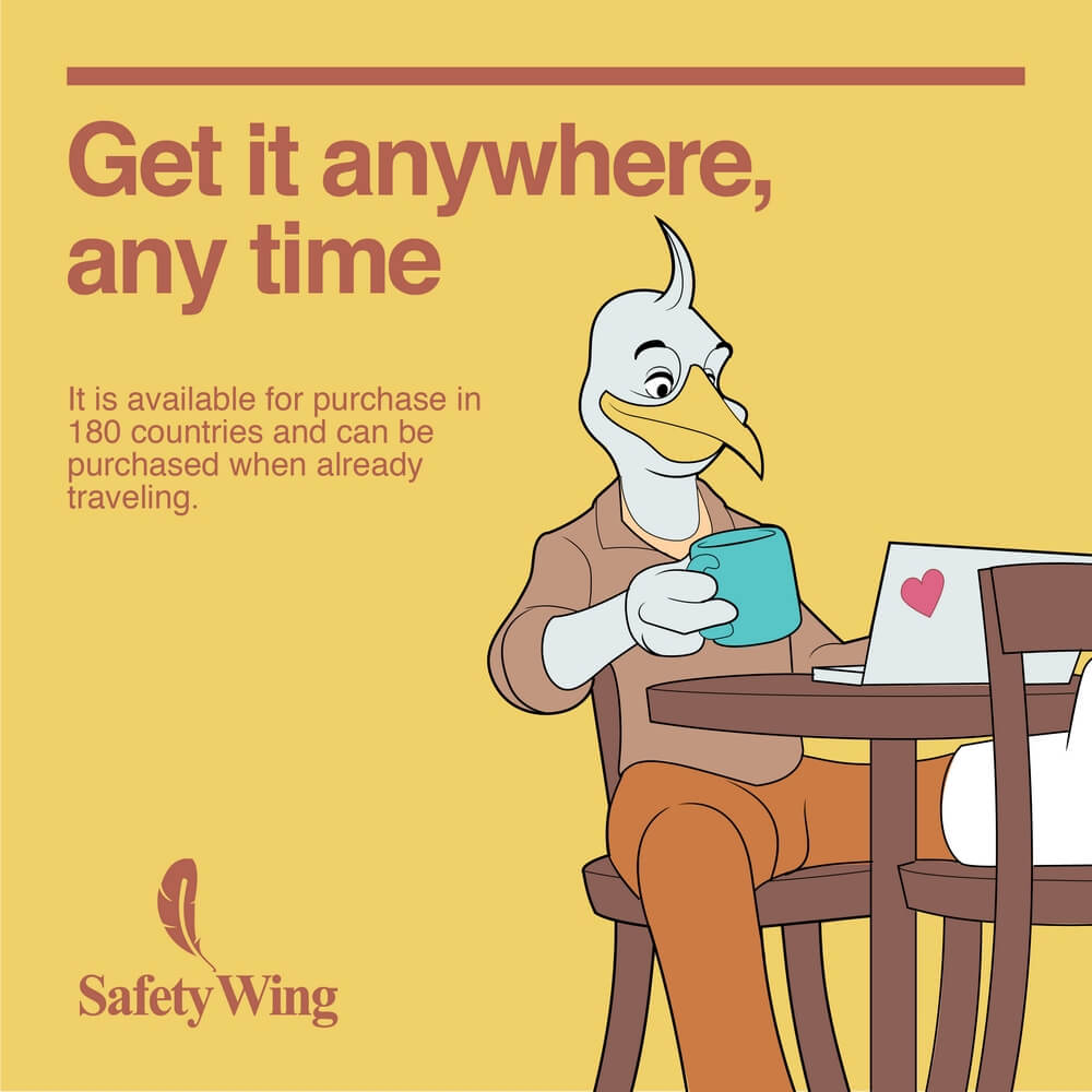 safetywing bird anywhere anytime