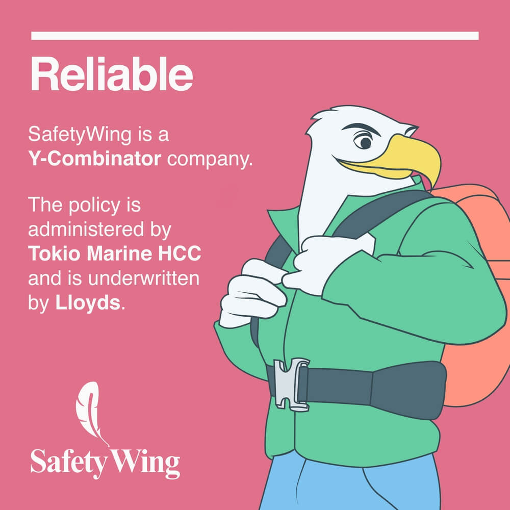 safetywing bird reliable